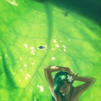the green fairy by ilsung