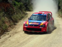 Gardemeister - Rally Sardinia by ShinjiRHCP
