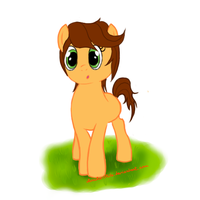 Alice's pony - first attempt by ae-Lit