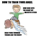 HOW TO TRAIN YOUR ANGEL by x0xNavix0x