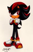 Shadow The Hedgehog by RAWN89