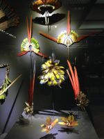 aztec feather artisan crafts by RaynalJacquemin