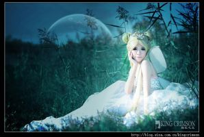 Princess Serenity:: 2 by ILoveChina