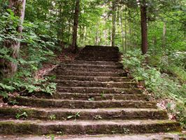 Forest Stock 3: Stairs by HOTNStock