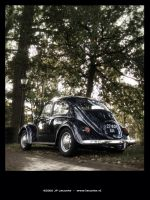 Beetle in classic setting by Leconte