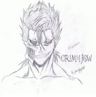 Grimmjow~Bleach by OwnedSwiftStars14