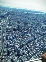 View From Tokyo Sky Tree by CakehMaria