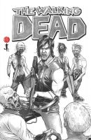 TWD - Daryl Dixon Cover by EvanLimberger