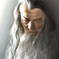 Gandalf the Grey by bickbong