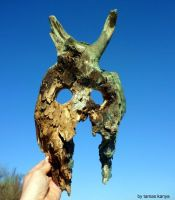 driftwood art gladiator mask devilhead by kanya by tom-tom1969