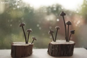 acorn caps toadstools by million-dandelions