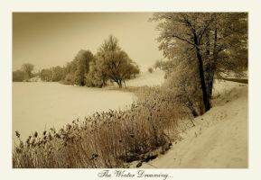 The Winter Dreming... by Erni009