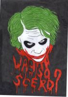 why so scerr? by fairyloves