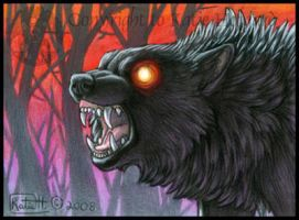 Night Wolf ACEO by KatieHofgard