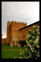 Certaldo Castle by penguinluv4ever