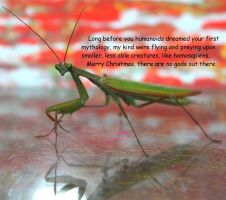 An Atheist Insect Fable by KeswickPinhead