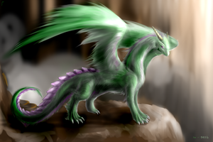 design for shenmifangke by Lena-Lucia-dragon