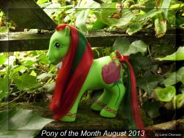Pony of the Month August 2013 by LarraChersan