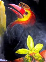 Toucan by TamiTw