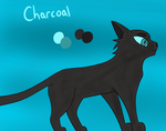 Charcoal Reference Sheet (kind of) by CharcoalPhantom