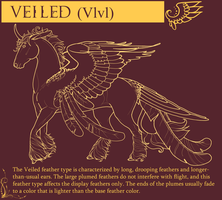 .: Veiled Feather Type :. by Rowe-House-Stables