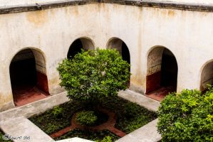 Inner gardens in Tepoztlan convent by AleLMT