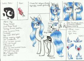 Reference Sheet by Careness