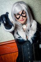 Black Cat Cosplay by piratesavvy07
