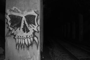 Skull Under the Bridge by TheChristianWulf