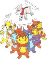 The Buizel Pack by Marquis2007