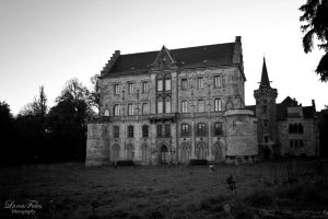 abandoned castle. 4 by LunaFeles
