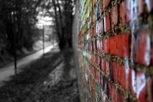 Wall colored and black and white by PythonIt