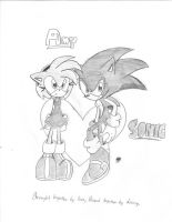 Amy and Sonic - New Style by AdiPrower94