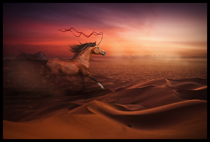 travel the sands of time.. by devils-horizon