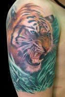 Tigre B Cover Up After by maximolutztattoo