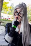 Black Cat 16 by Insane-Pencil