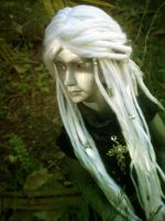 The Forest's Design by princelingdoll