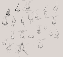 20 Noses by skybrush