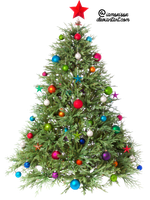 Xmas tree png 1 by iamszissz