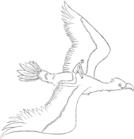 Riding a Bird lineart by kargaroc586
