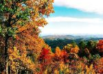 Blueridge Parkway by bewilderedconfused