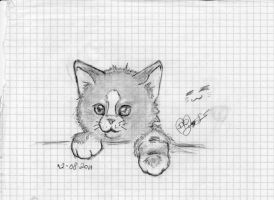 little cat by MaylaDR93