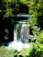 Minnopa Falls State Park 2 by simpspin