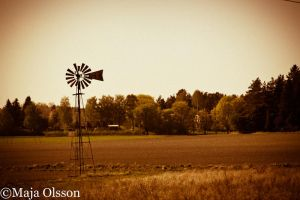 Thank you Mr. Windmill by Maionara