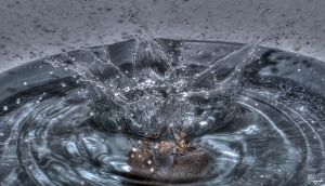 Highspeed Water Photography [7] by PPFotografie