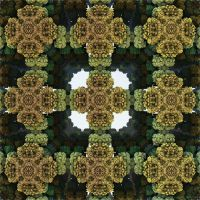 Mostly Menger by GraphicLia