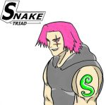 The Snake Aka TRIAD by Geilozer