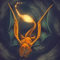 006 - Charizard by Taddle