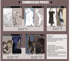 Commission information by vollmondstudio