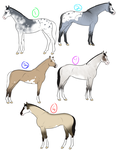 OPEN_Grulla Adoptables by Isolated-Design